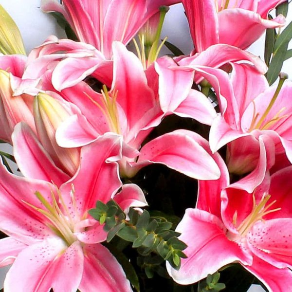 Pink Lilies Bouquet of flowers Delivered