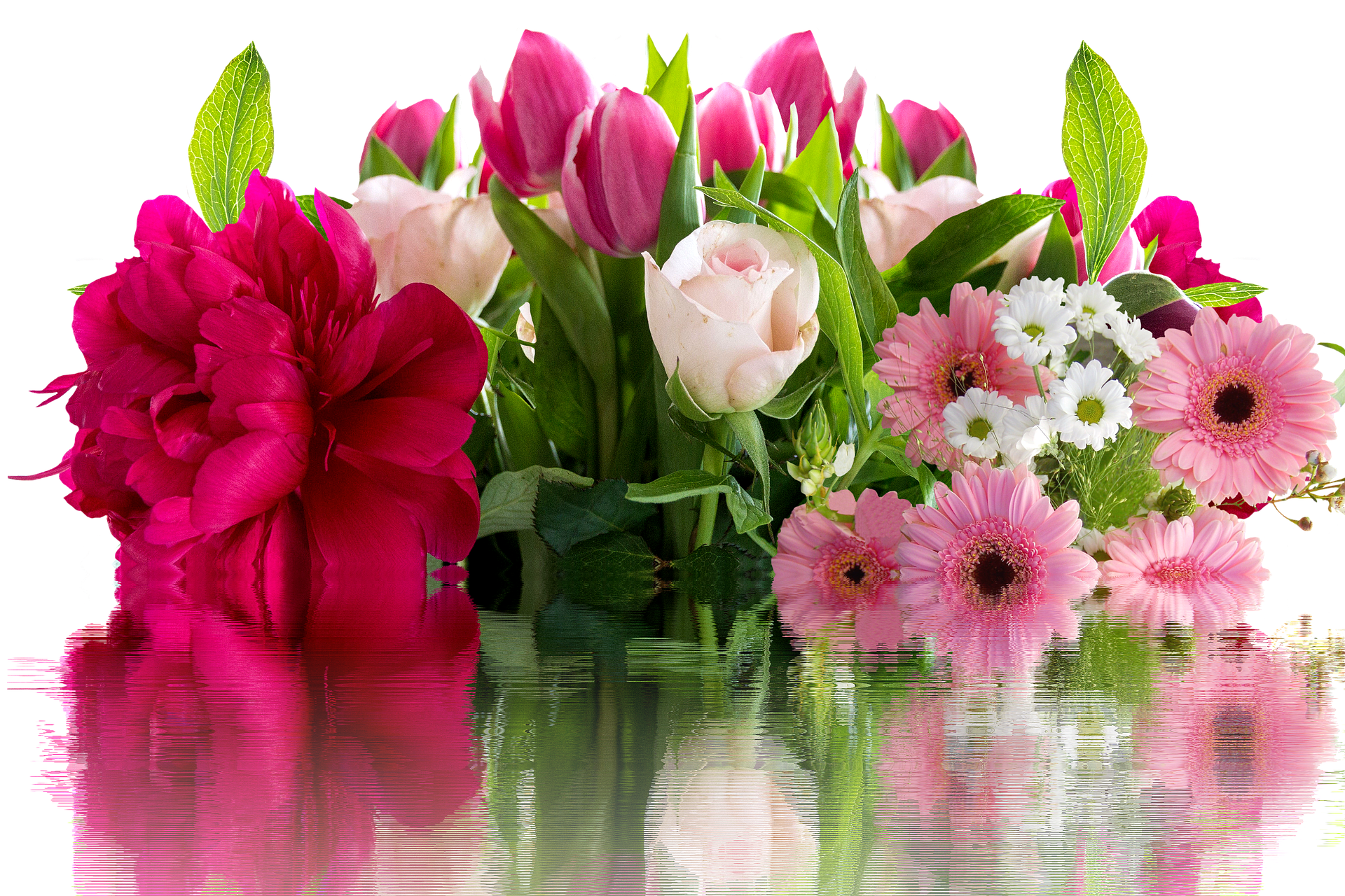 flowers with reflection